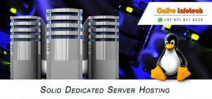Onlive Infotech brings Cheap Dedicated ServerOnlive Infotech brings Cheap Dedicated Server