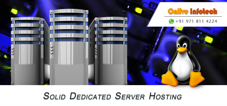 Onlive Infotech Offer Cheap Dedicated Server That Help to Maximize Business Sales